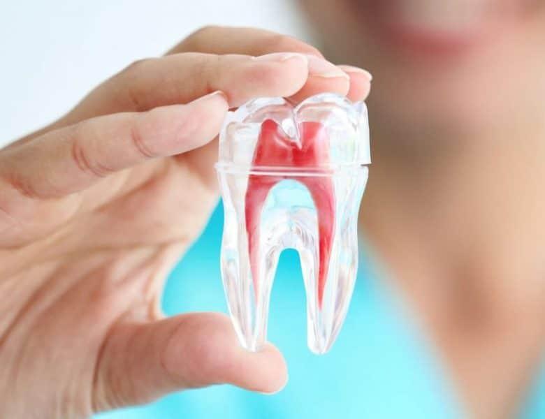 Eryaman Diş Ve Başarılı Çalışmalar